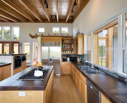 Delgado Architect Ashland Light-filled Kitchen